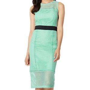 Ny and CO Creamy Mint lace Mesh Sheath Dress